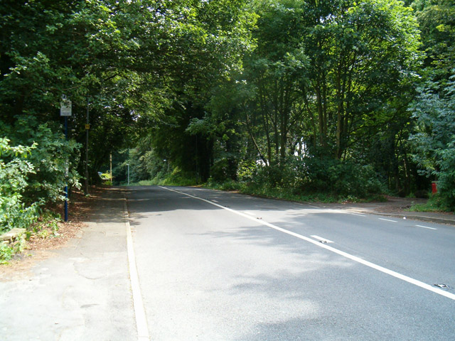 Hollings Lane. The place of the infamous ambush at Silverwood.